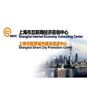 上海市互联网经济咨询