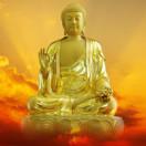 每日梵音佛语