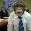 程序猿日报