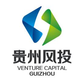 贵州省科技风险投资有限公司