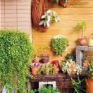 阳台养花窍门