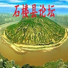 山西省石楼县论坛