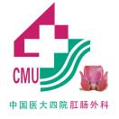 中国医大四医肛肠科信息平台