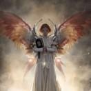 天使团队邮评