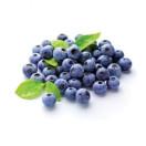 北极芝紫蓝莓花青素