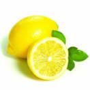 中国柠檬门户