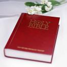Holy Bible Love