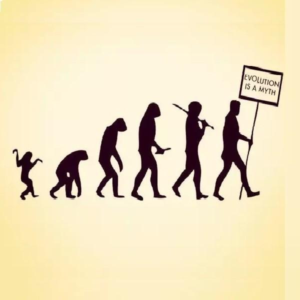 策略研究猿