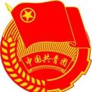 大杨树团委