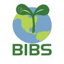 BIBS青苗国际双语学校