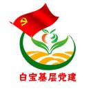 白宝乡基层党建