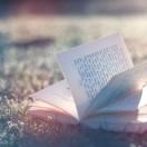 每天睡前读书