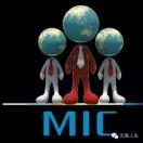 MIC注册咨询服务平台