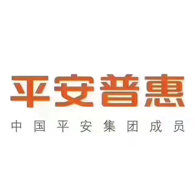 黑龙江省平安普惠外部渠道