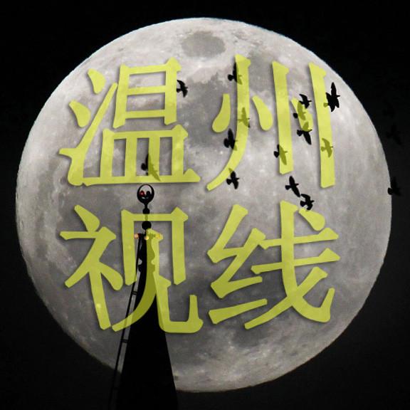 温州视线wzsxoegg微信公众号头像