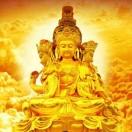 每日精粹禅学佛语