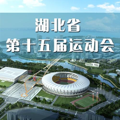 湖北省第十五届运动会