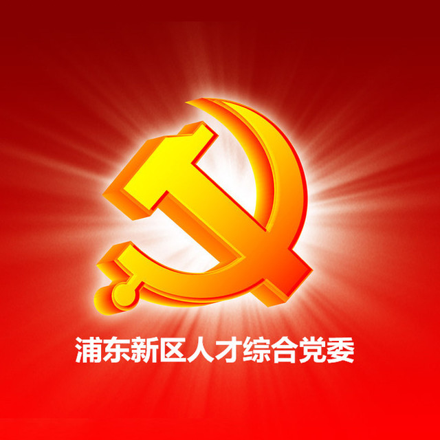 上海市浦东新区人才综合党委