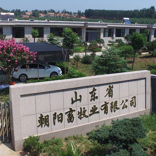 山东省朝阳畜牧业有限公司