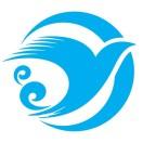 海鸥旅行网