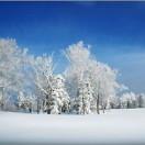 雪谷阳光驿站