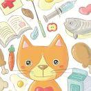 猫计划头像图片