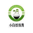 小白球高尔夫CLUB