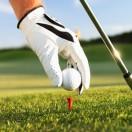 高尔夫业余精英海外挑战赛