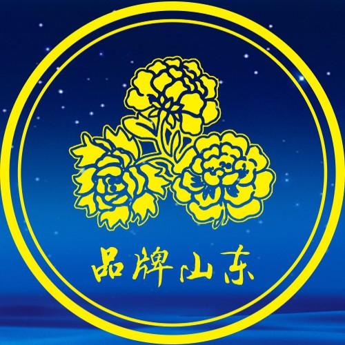 山东省品牌建设大会