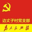 边丈子村党支部服务平台