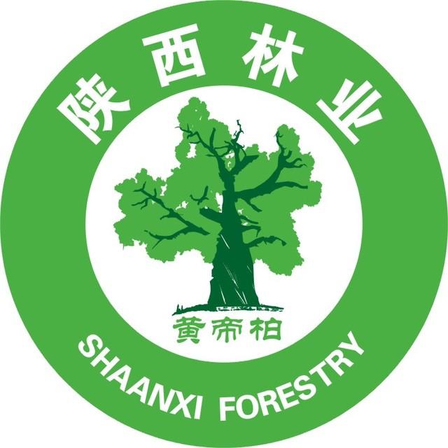 陕西省森林体验基地