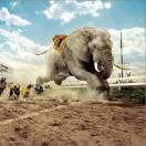一只与猎狗赛跑的大象