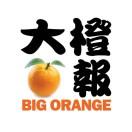 大橙报BigOrangeMedia