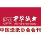 中华纸业传媒