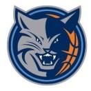 山猫体育文化发展有限公司