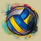 上海松华业余排球俱乐部