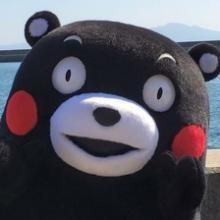 熊本熊日记