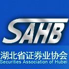 湖北省证券业协会