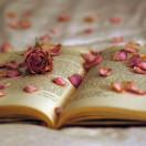 我们一起读书吧