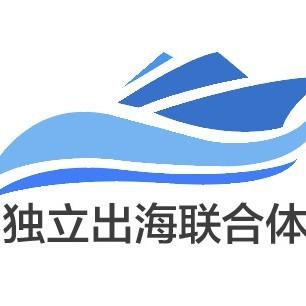 独立出海联合体