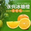 永兴龙王坦冰糖橙