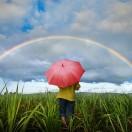 彩虹的彼端