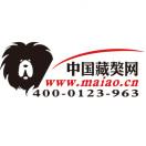 中国藏獒网