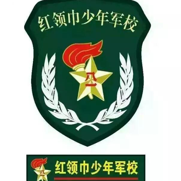 山东省少年军校军事夏令营