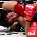 MMA格斗视频教学解析