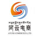 西藏阿云电子商务有限公司