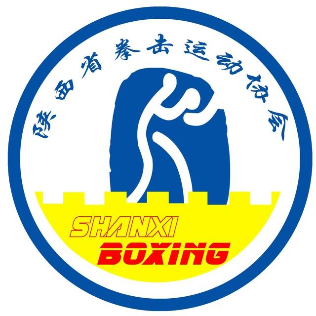 陕西省拳击运动协会