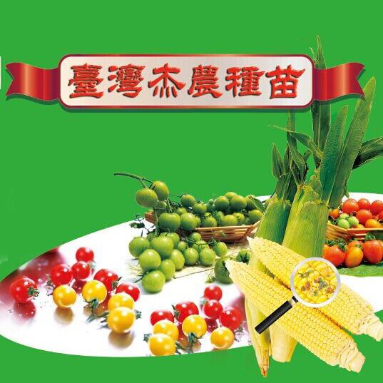 台湾杰农种苗