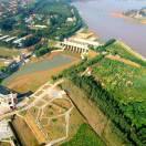 博兴县打渔张森林公园