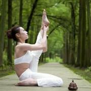 练瑜伽动起来